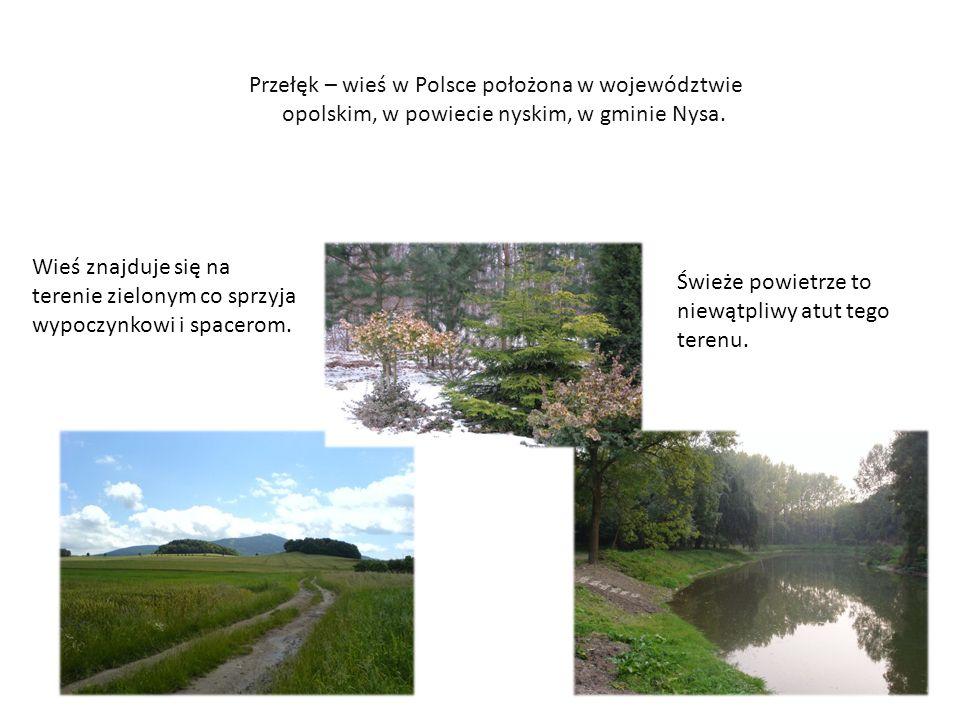 Przełęk – wieś w Polsce położona w województwie opolskim, w powiecie nyskim, w gminie Nysa.