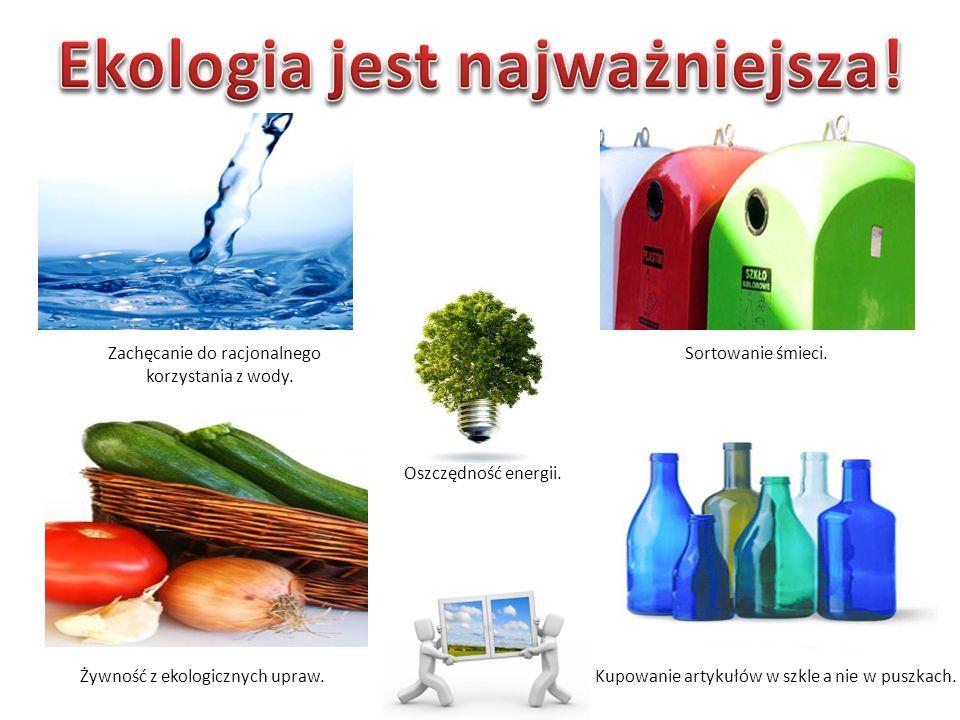 Oszczędność energii. Żywność z ekologicznych upraw.Kupowanie artykułów w szkle a nie w puszkach.