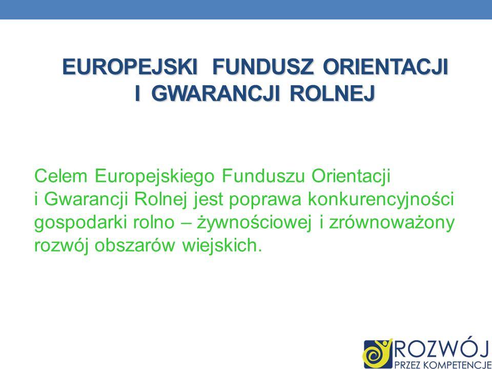 EUROPEJSKI FUNDUSZ ORIENTACJI I GWARANCJI ROLNEJ Celem Europejskiego Funduszu Orientacji i Gwarancji Rolnej jest poprawa konkurencyjności gospodarki r