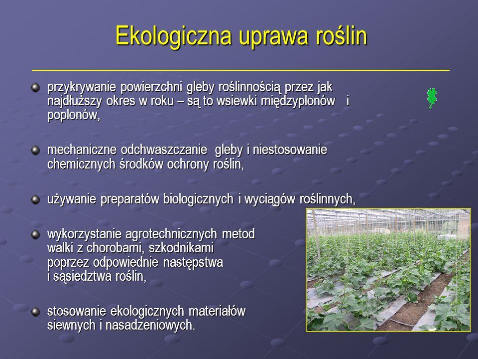 Ekologiczna uprawa roślin przykrywanie powierzchni gleby roślinnością przez jak najdłuższy okres w roku – są to wsiewki międzyplonów i poplonów, przyk