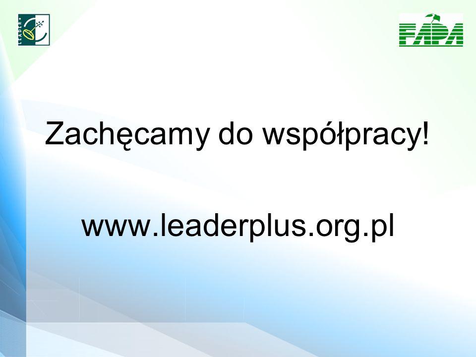 Zachęcamy do współpracy! www.leaderplus.org.pl