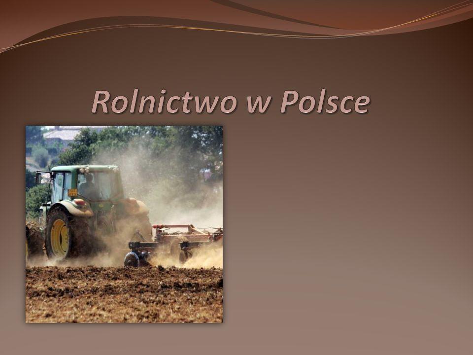 Rolnictwo jako dział gospodarki Rolnictwo jest działem gospodarki najbardziej uzależnionym od warunków, a zwłaszcza od klimatu, ukształtowania terenu i stosunków glebowych.
