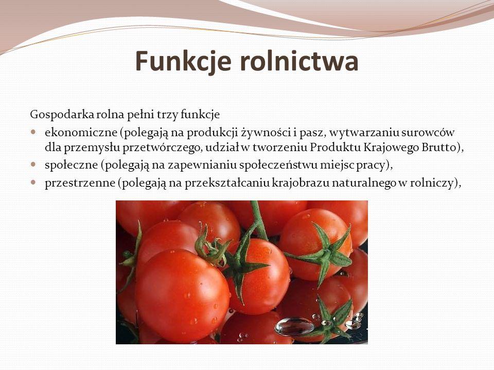 Funkcje rolnictwa Gospodarka rolna pełni trzy funkcje ekonomiczne (polegają na produkcji żywności i pasz, wytwarzaniu surowców dla przemysłu przetwórc