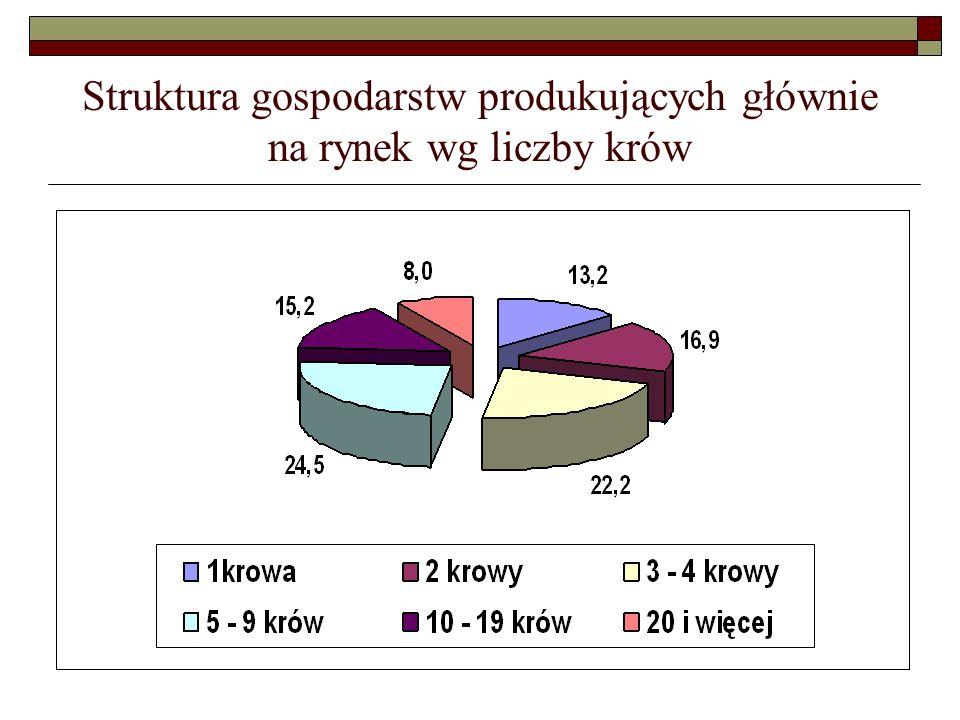 Struktura gospodarstw produkujących głównie na rynek wg liczby krów
