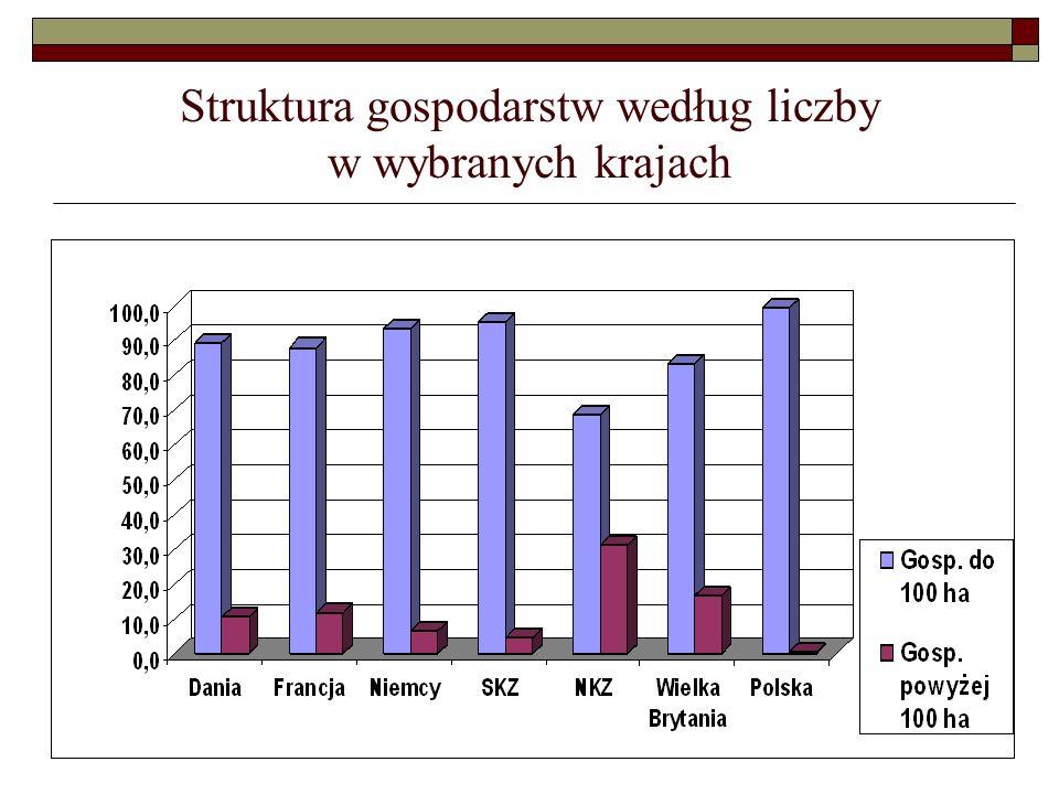 Struktura gospodarstw według liczby w wybranych krajach