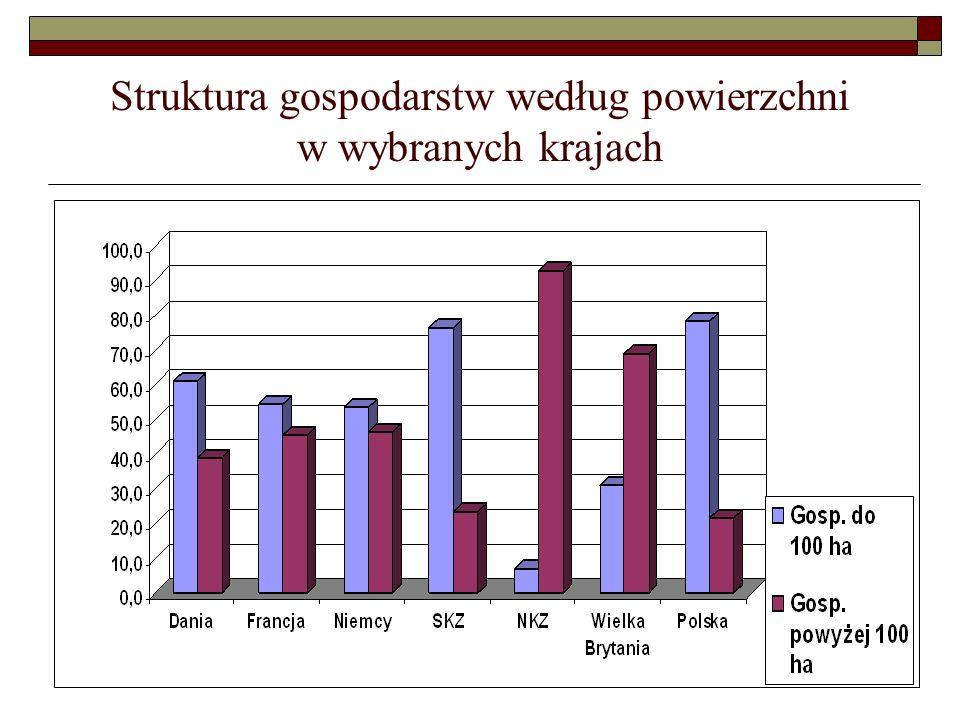 Struktura gospodarstw trzodowych według skali chowu w 2002 roku