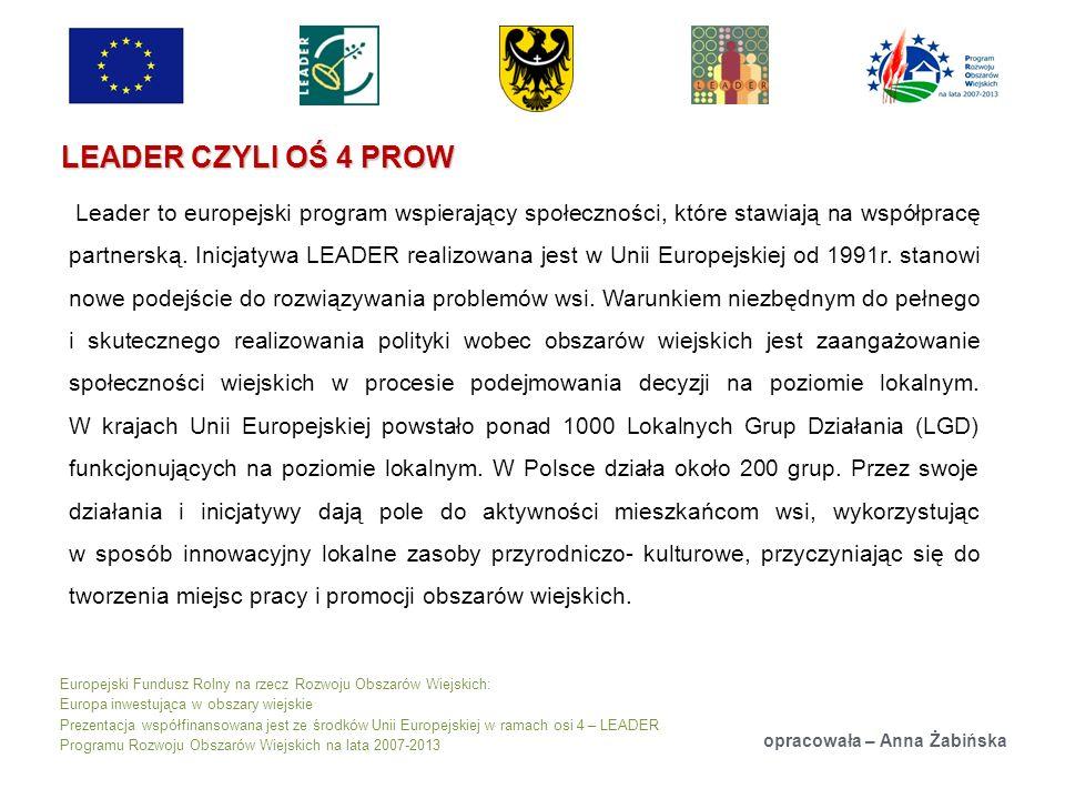 Europejski Fundusz Rolny na rzecz Rozwoju Obszarów Wiejskich: Europa inwestująca w obszary wiejskie Prezentacja współfinansowana jest ze środków Unii Europejskiej w ramach osi 4 – LEADER Programu Rozwoju Obszarów Wiejskich na lata 2007-2013 LEADER CZYLI OŚ 4 PROW opracowała – Anna Żabińska Leader to europejski program wspierający społeczności, które stawiają na współpracę partnerską.