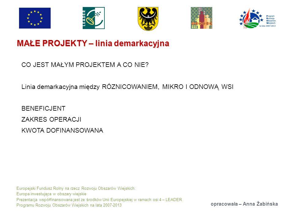 Europejski Fundusz Rolny na rzecz Rozwoju Obszarów Wiejskich: Europa inwestująca w obszary wiejskie Prezentacja współfinansowana jest ze środków Unii Europejskiej w ramach osi 4 – LEADER Programu Rozwoju Obszarów Wiejskich na lata 2007-2013 MAŁE PROJEKTY – linia demarkacyjna opracowała – Anna Żabińska CO JEST MAŁYM PROJEKTEM A CO NIE.