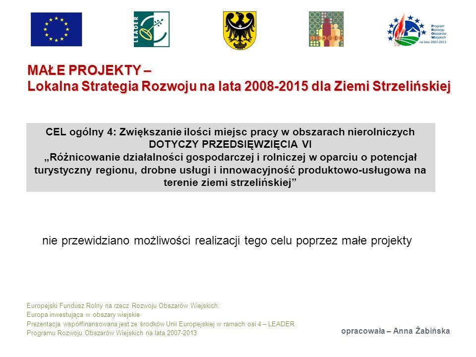 Europejski Fundusz Rolny na rzecz Rozwoju Obszarów Wiejskich: Europa inwestująca w obszary wiejskie Prezentacja współfinansowana jest ze środków Unii Europejskiej w ramach osi 4 – LEADER Programu Rozwoju Obszarów Wiejskich na lata 2007-2013 MAŁE PROJEKTY – Lokalna Strategia Rozwoju na lata 2008-2015 dla Ziemi Strzelińskiej opracowała – Anna Żabińska nie przewidziano możliwości realizacji tego celu poprzez małe projekty CEL ogólny 4: Zwiększanie ilości miejsc pracy w obszarach nierolniczych DOTYCZY PRZEDSIĘWZIĘCIA VI Różnicowanie działalności gospodarczej i rolniczej w oparciu o potencjał turystyczny regionu, drobne usługi i innowacyjność produktowo-usługowa na terenie ziemi strzelińskiej