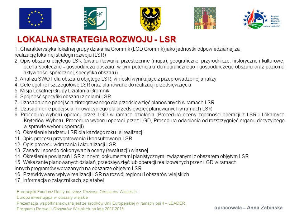 Europejski Fundusz Rolny na rzecz Rozwoju Obszarów Wiejskich: Europa inwestująca w obszary wiejskie Prezentacja współfinansowana jest ze środków Unii Europejskiej w ramach osi 4 – LEADER Programu Rozwoju Obszarów Wiejskich na lata 2007-2013 LOKALNA STRATEGIA ROZWOJU - LSR opracowała – Anna Żabińska 1.