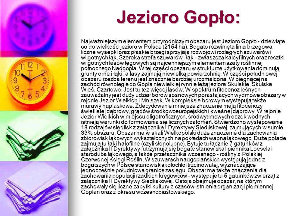 Jezioro Gopło: Najważniejszym elementem przyrodniczym obszaru jest Jezioro Gopło - dziewiąte co do wielkości jezioro w Polsce (2154 ha). Bogato rozwin