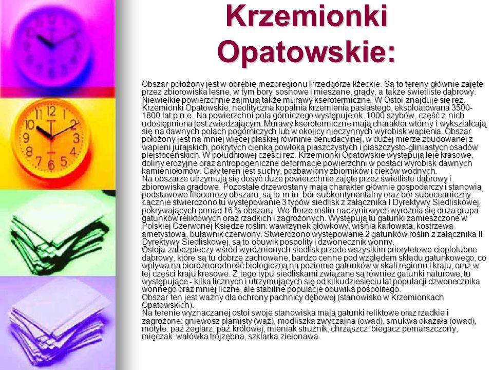 Krzemionki Opatowskie: Obszar położony jest w obrębie mezoregionu Przedgórze Iłżeckie. Są to tereny głównie zajęte przez zbiorowiska leśne, w tym bory