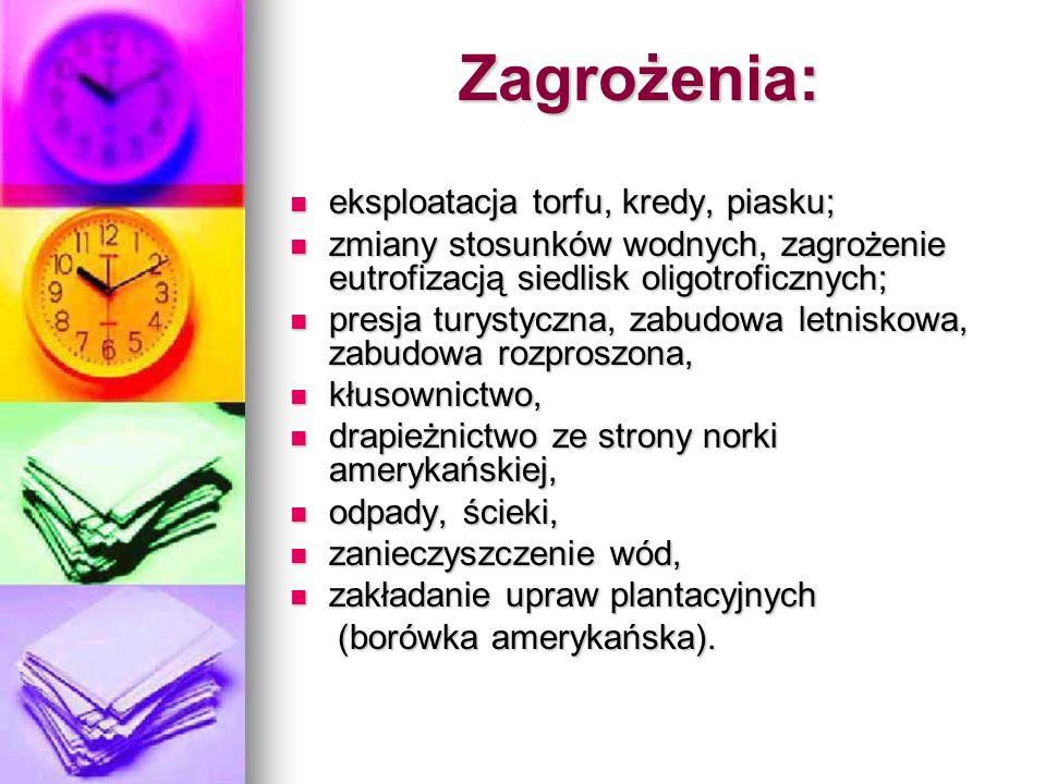 Jezioro Gopło: Najważniejszym elementem przyrodniczym obszaru jest Jezioro Gopło - dziewiąte co do wielkości jezioro w Polsce (2154 ha).