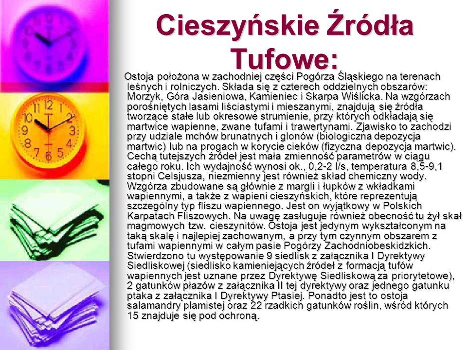 Cieszyńskie Źródła Tufowe: Ostoja położona w zachodniej części Pogórza Śląskiego na terenach leśnych i rolniczych. Składa się z czterech oddzielnych o