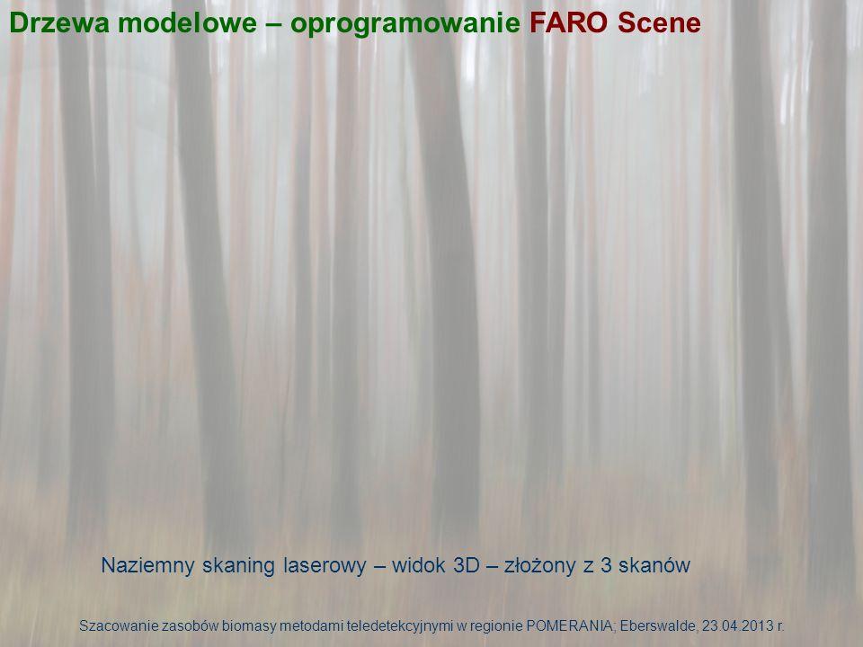 Naziemny skaning laserowy – odseparowane drzewo – widok 2D złożony z 3 skanów Drzewa modelowe – oprogramowanie FARO Scene Szacowanie zasobów biomasy metodami teledetekcyjnymi w regionie POMERANIA; Eberswalde, 23.04.2013 r.