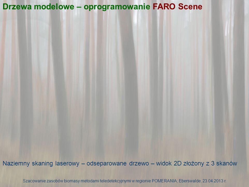 Naziemny skaning laserowy – odseparowane drzewo – widok 3D złożony z 3 skanów Drzewa modelowe – oprogramowanie FARO Scene Szacowanie zasobów biomasy metodami teledetekcyjnymi w regionie POMERANIA; Eberswalde, 23.04.2013 r.