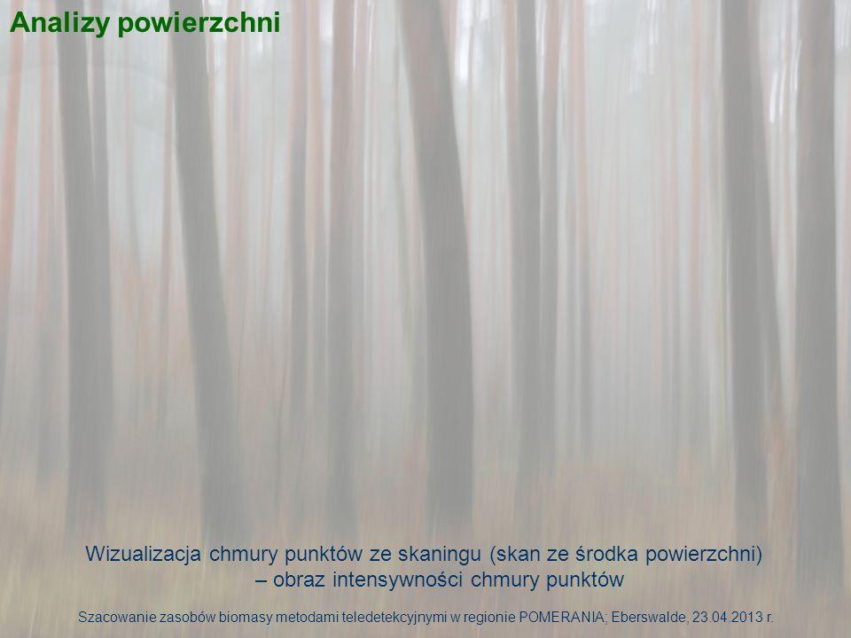 Analizy powierzchni Wizualizacja chmury punktów ze skaningu (skan ze środka powierzchni) – chmura pokolorowana zdjęciami z kamery wbudowanej w skaner Szacowanie zasobów biomasy metodami teledetekcyjnymi w regionie POMERANIA; Eberswalde, 23.04.2013 r.