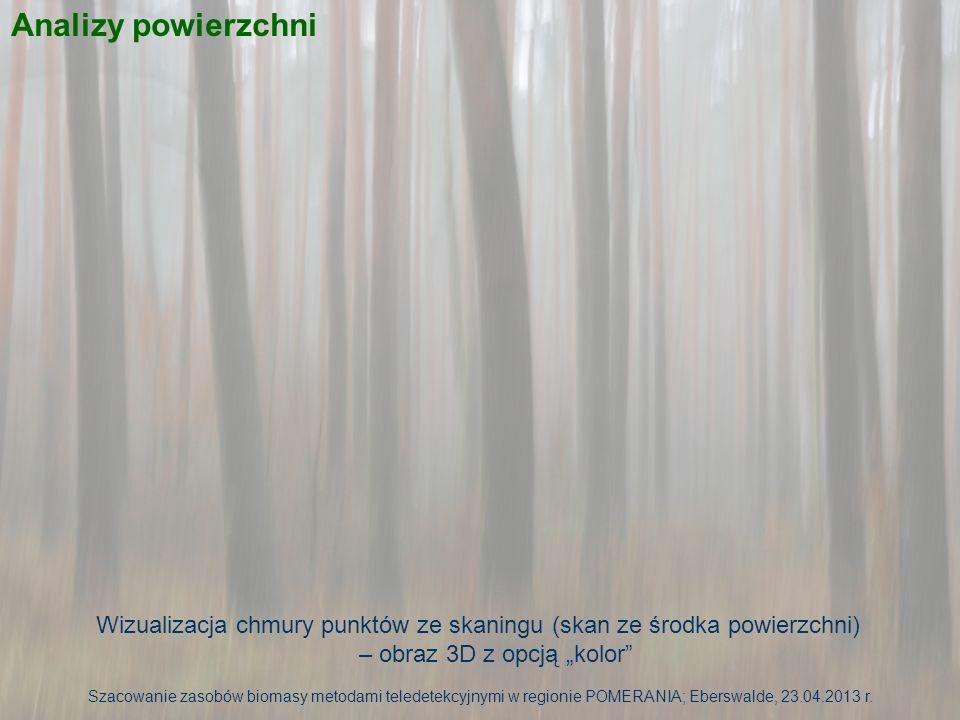 Analizy powierzchni Wizualizacja chmury punktów ze skaningu (skan ze środka powierzchni) – obraz 3D z opcją kolor Szacowanie zasobów biomasy metodami teledetekcyjnymi w regionie POMERANIA; Eberswalde, 23.04.2013 r.