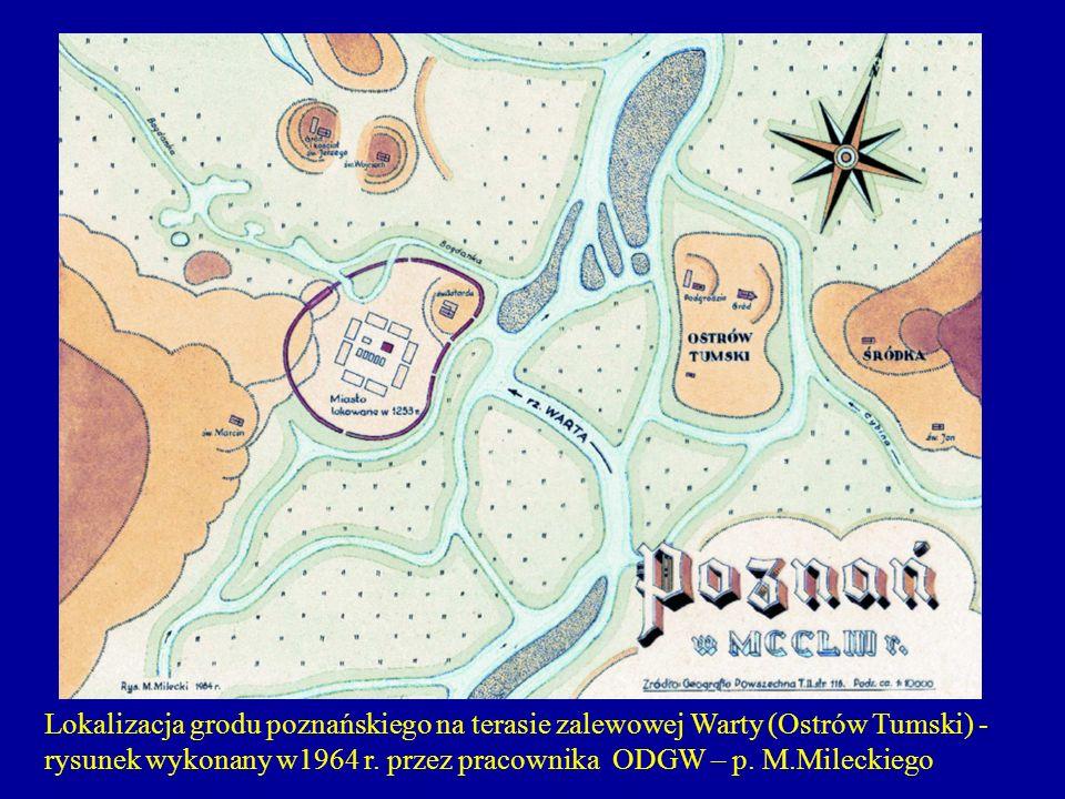 Lokalizacja grodu poznańskiego na terasie zalewowej Warty (Ostrów Tumski) - rysunek wykonany w1964 r. przez pracownika ODGW – p. M.Mileckiego