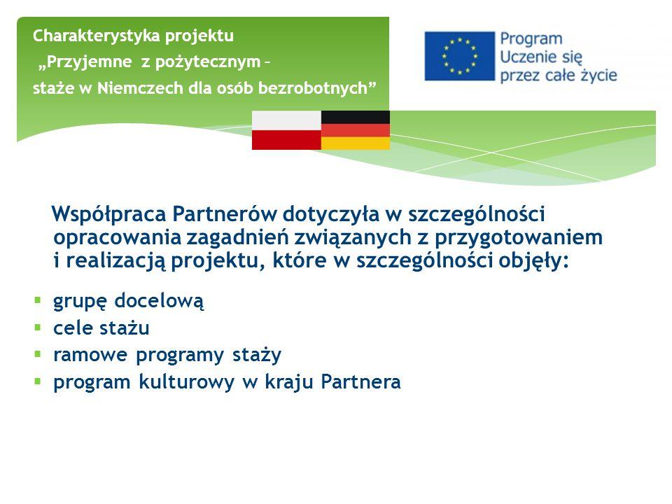 Współpraca Partnerów dotyczyła w szczególności opracowania zagadnień związanych z przygotowaniem i realizacją projektu, które w szczególności objęły: