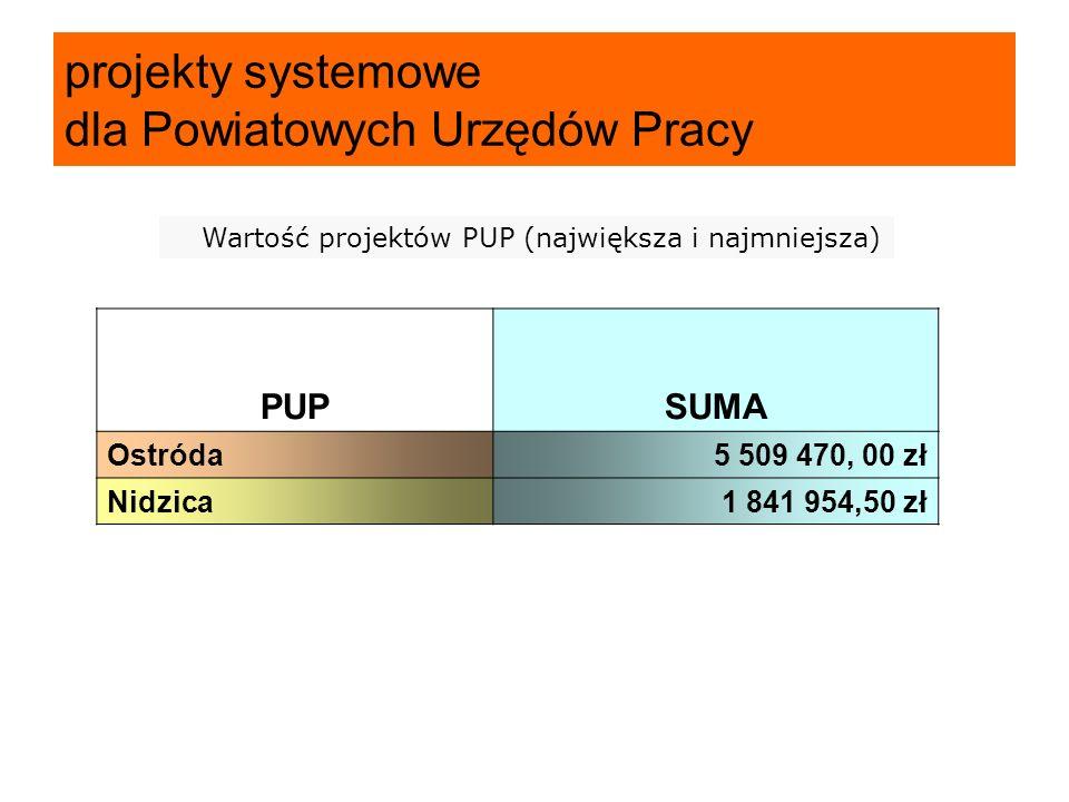 PUPSUMA Ostróda5 509 470, 00 zł Nidzica1 841 954,50 zł projekty systemowe dla Powiatowych Urzędów Pracy Wartość projektów PUP (największa i najmniejsza)