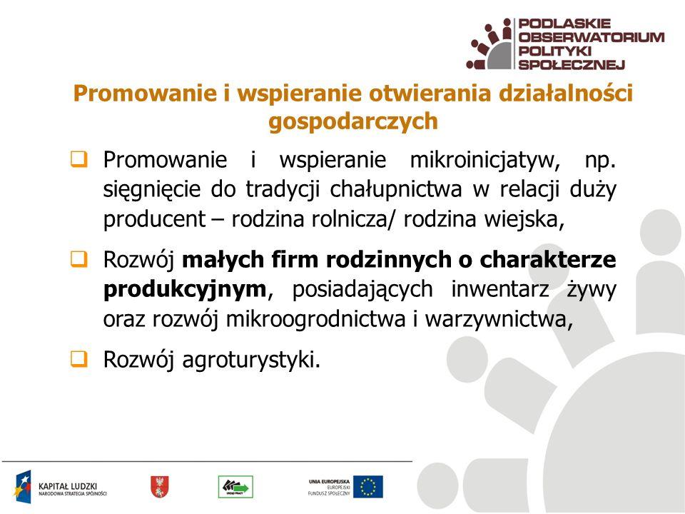 Promowanie i wspieranie otwierania działalności gospodarczych Promowanie i wspieranie mikroinicjatyw, np. sięgnięcie do tradycji chałupnictwa w relacj