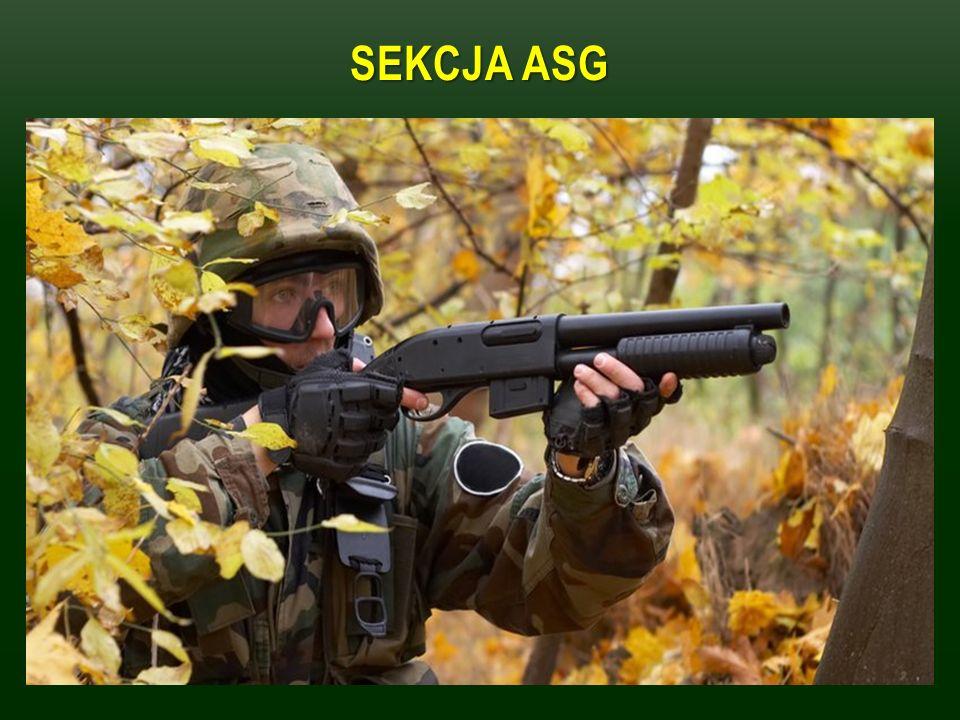 SEKCJA ASG