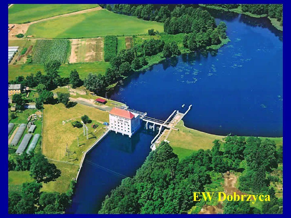EW Dobrzyca