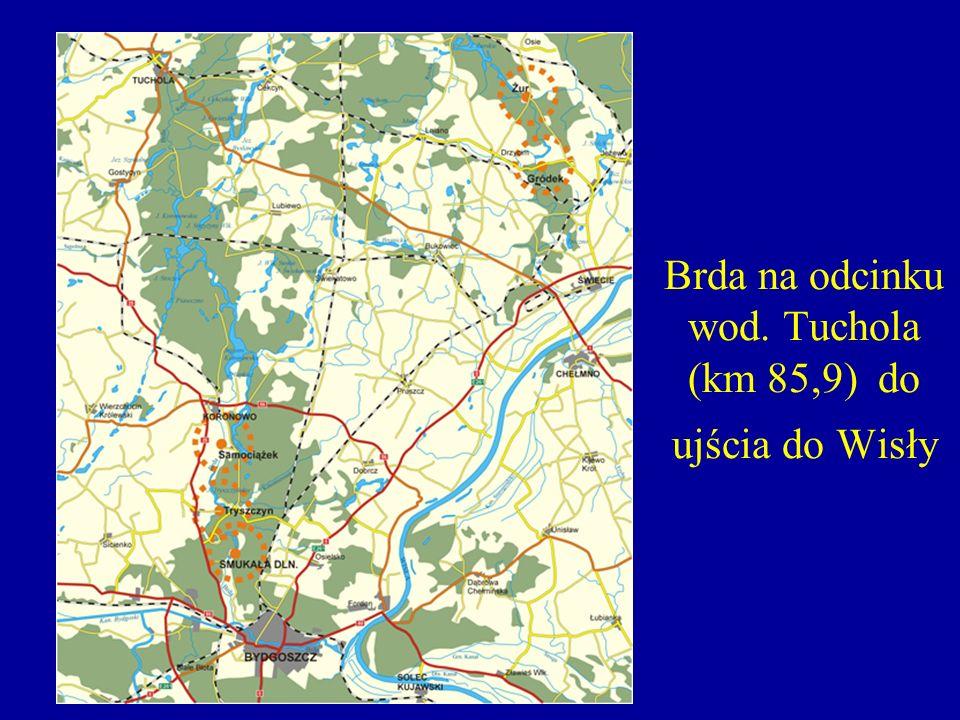 Zbiornik Koronowski jaz wlotowy do kanału roboczego w Samociążku, zamek wodny przy elektrowni, rurociągi łączące zamek wodny i budynek siłowni o średnicy 4,8 m i długości 96 m, budynek siłowni z dwoma turbozespołami o mocy 13,750 MW każdy, rozdzielnia 110kV.