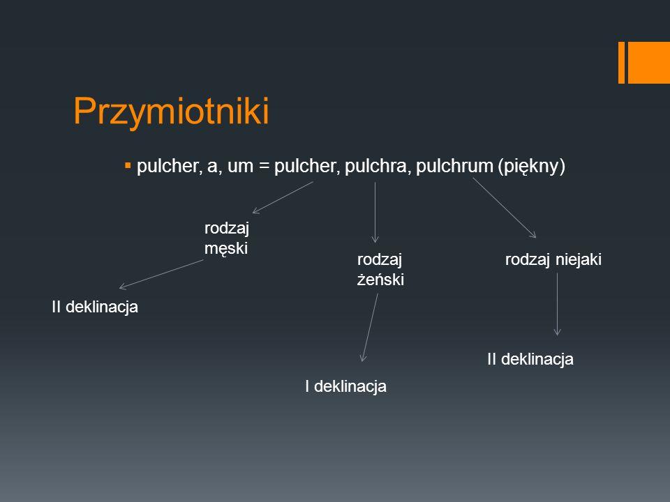 Przymiotniki pulcher, a, um = pulcher, pulchra, pulchrum (piękny) rodzaj męski rodzaj żeński rodzaj niejaki II deklinacja I deklinacja II deklinacja
