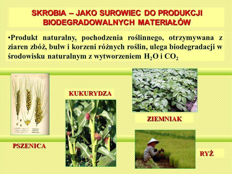 SKROBIA – JAKO SUROWIEC DO PRODUKCJI BIODEGRADOWALNYCH MATERIAŁÓW Produkt naturalny, pochodzenia roślinnego, otrzymywana z ziaren zbóż, bulw i korzeni