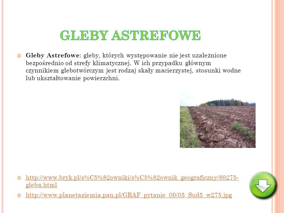 Gleby Astrefowe : gleby, których występowanie nie jest uzależnione bezpośrednio od strefy klimatycznej. W ich przypadku głównym czynnikiem glebotwórcz