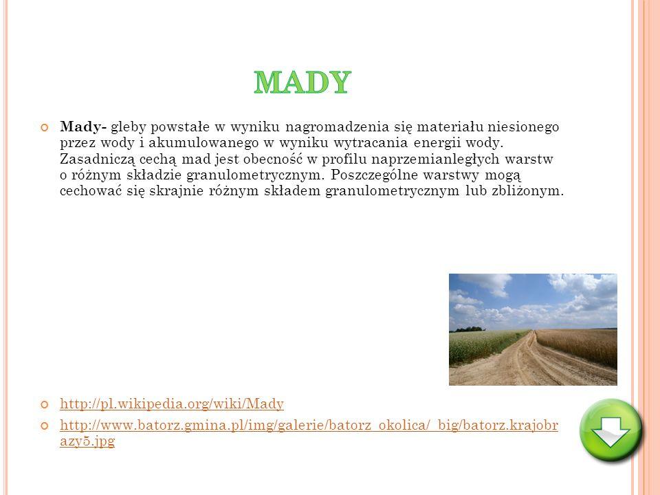 Mady- gleby powstałe w wyniku nagromadzenia się materiału niesionego przez wody i akumulowanego w wyniku wytracania energii wody. Zasadniczą cechą mad