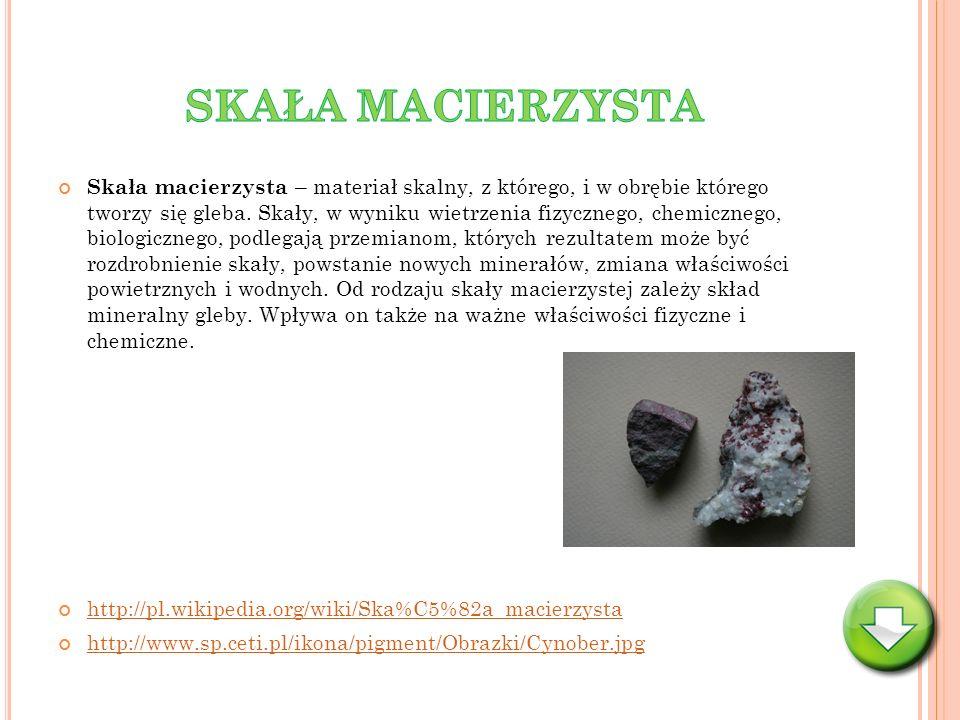 Skała macierzysta – materiał skalny, z którego, i w obrębie którego tworzy się gleba. Skały, w wyniku wietrzenia fizycznego, chemicznego, biologiczneg
