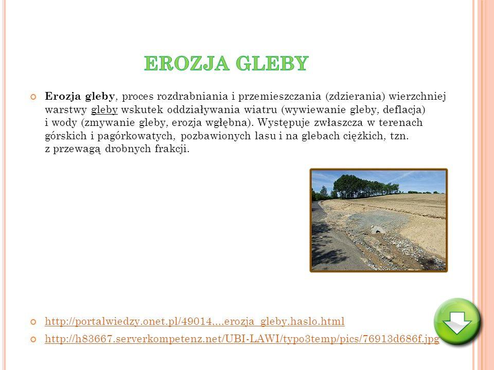 Erozja gleby, proces rozdrabniania i przemieszczania (zdzierania) wierzchniej warstwy gleby wskutek oddziaływania wiatru (wywiewanie gleby, deflacja)
