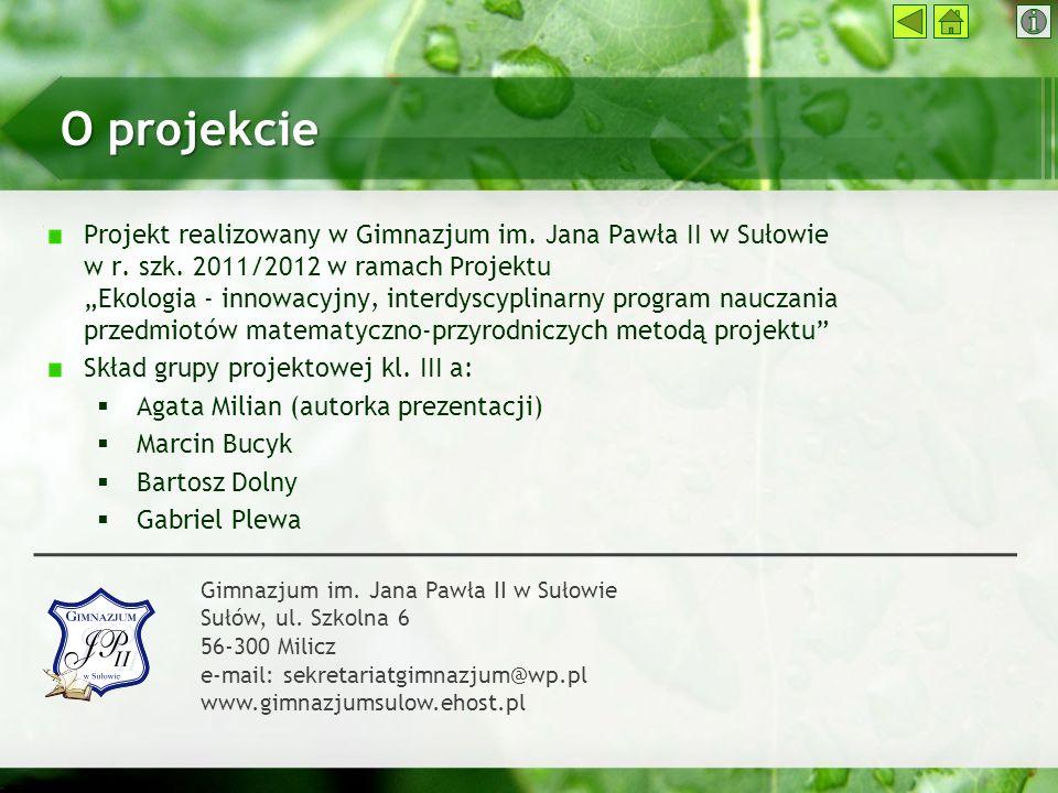 O projekcie Projekt realizowany w Gimnazjum im. Jana Pawła II w Sułowie w r. szk. 2011/2012 w ramach Projektu Ekologia - innowacyjny, interdyscyplinar