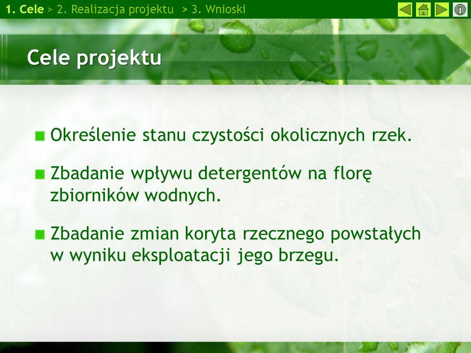 Cele projektu Określenie stanu czystości okolicznych rzek. Zbadanie wpływu detergentów na florę zbiorników wodnych. Zbadanie zmian koryta rzecznego po