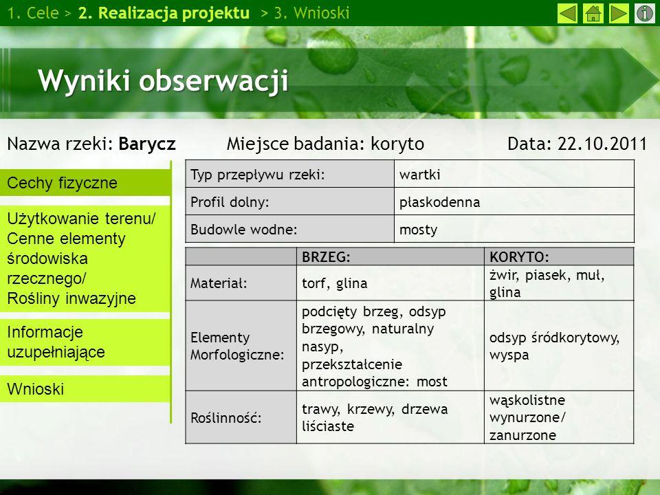Wywiad z panią Hanną Jankowską 1.Cele > 2. Realizacja projektu > 3.