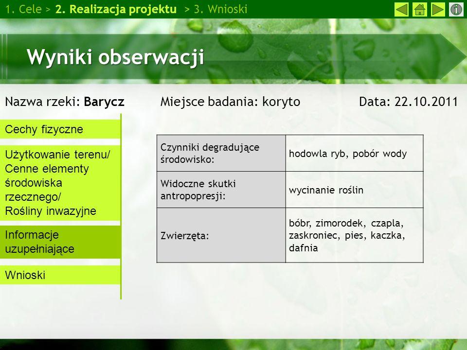 Wpływ detergentów na rośliny 1.Cele > 2. Realizacja projektu > 3.