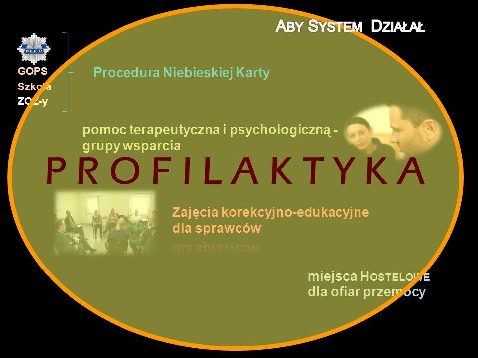 pomoc terapeutyczna i psychologiczną - grupy wsparcia Procedura Niebieskiej Karty miejsca H OSTELOWE dla ofiar przemocy miejsca H OSTELOWE dla ofiar p