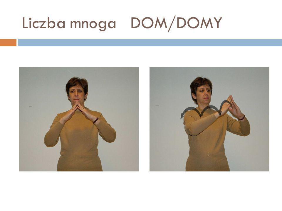 Liczba mnoga DOM/DOMY