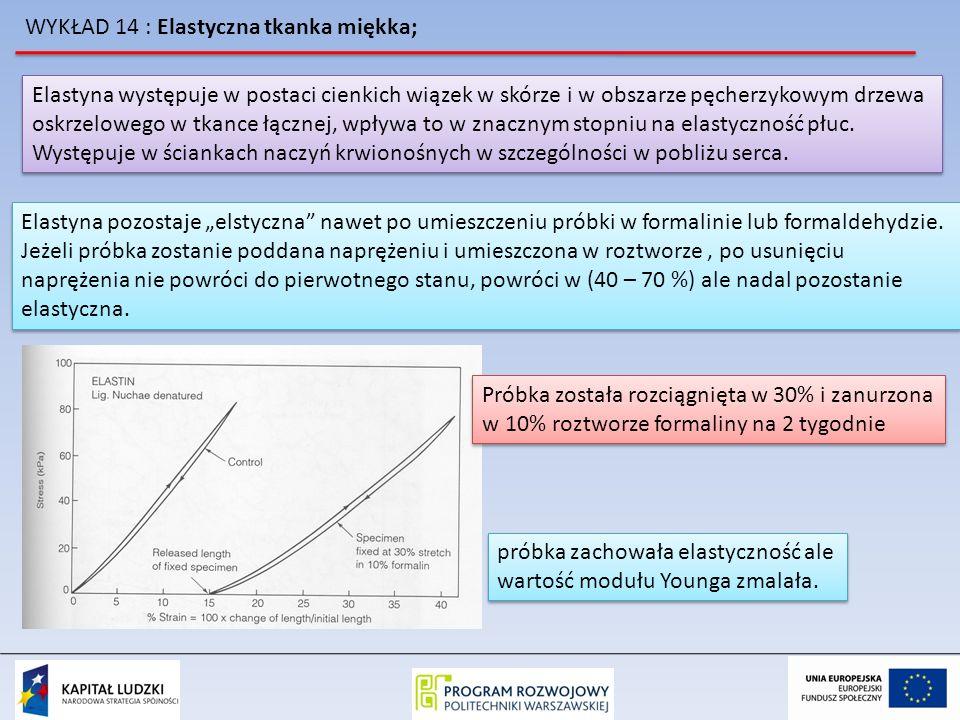 WYKŁAD 14 : Elastyczna tkanka miękka; Jeżeli zrobilibyśmy wykres zależności wydłużenia próbki przed zanurzeniem w formalinie w funkcji miary powrotu do stanu pierwotnego po uwolnieniu próbki otrzymalibyśmy zależność: Jeżeli zrobilibyśmy wykres zależności wydłużenia próbki przed zanurzeniem w formalinie w funkcji miary powrotu do stanu pierwotnego po uwolnieniu próbki otrzymalibyśmy zależność: Powoduje to że próbki tkanki na skutek kurczenia się włókien elastylowych zmieniają swój wygląd Powoduje to że próbki tkanki na skutek kurczenia się włókien elastylowych zmieniają swój wygląd