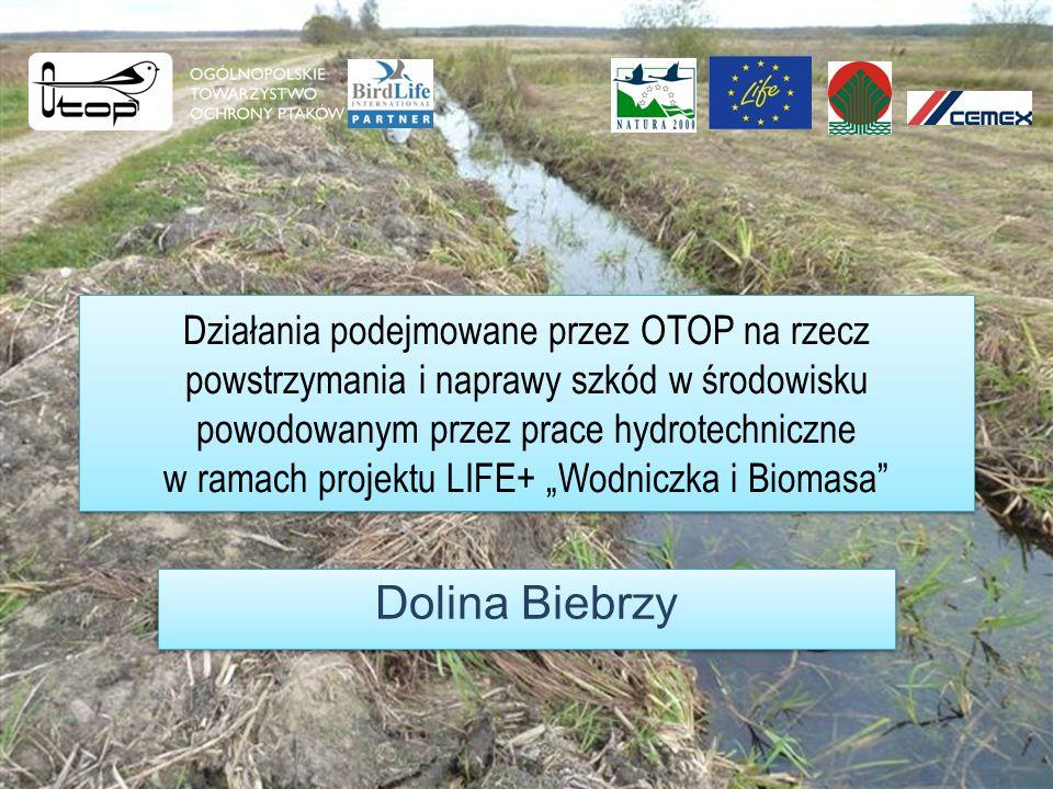 Działania podejmowane przez OTOP na rzecz powstrzymania i naprawy szkód w środowisku powodowanym przez prace hydrotechniczne w ramach projektu LIFE+ Wodniczka i Biomasa Dolina Biebrzy