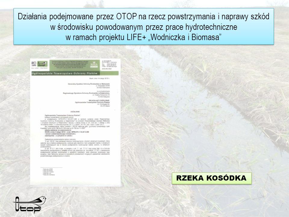 Działania podejmowane przez OTOP na rzecz powstrzymania i naprawy szkód w środowisku powodowanym przez prace hydrotechniczne w ramach projektu LIFE+ Wodniczka i Biomasa RZEKA KOSÓDKA