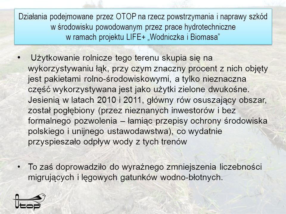 Działania podejmowane przez OTOP na rzecz powstrzymania i naprawy szkód w środowisku powodowanym przez prace hydrotechniczne w ramach projektu LIFE+ Wodniczka i Biomasa OTOP realizował działania dwukierunkowo.