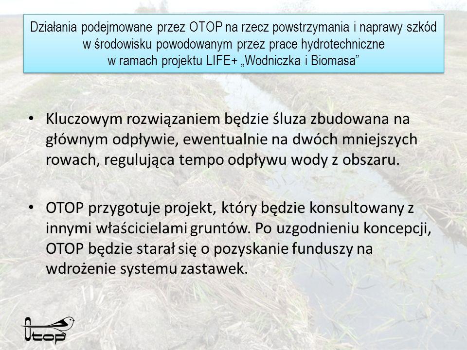 Działania podejmowane przez OTOP na rzecz powstrzymania i naprawy szkód w środowisku powodowanym przez prace hydrotechniczne w ramach projektu LIFE+ Wodniczka i Biomasa Kluczowym rozwiązaniem będzie śluza zbudowana na głównym odpływie, ewentualnie na dwóch mniejszych rowach, regulująca tempo odpływu wody z obszaru.