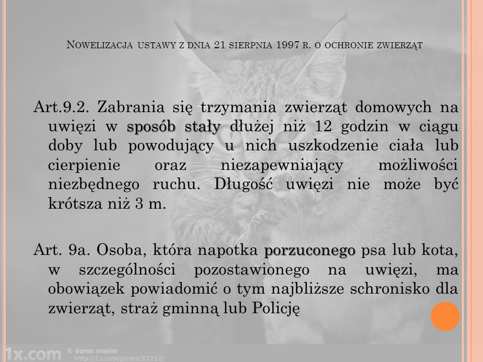 N OWELIZACJA USTAWY Z DNIA 21 SIERPNIA 1997 R. O OCHRONIE ZWIERZĄT sposób stały Art.9.2. Zabrania się trzymania zwierząt domowych na uwięzi w sposób s