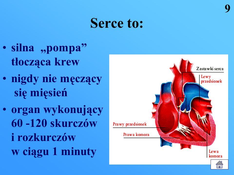 W skład układu krążenia wchodzą: 1. Serce 2. Naczynia krwionośne: tętnice żyły naczynia włosowate 8