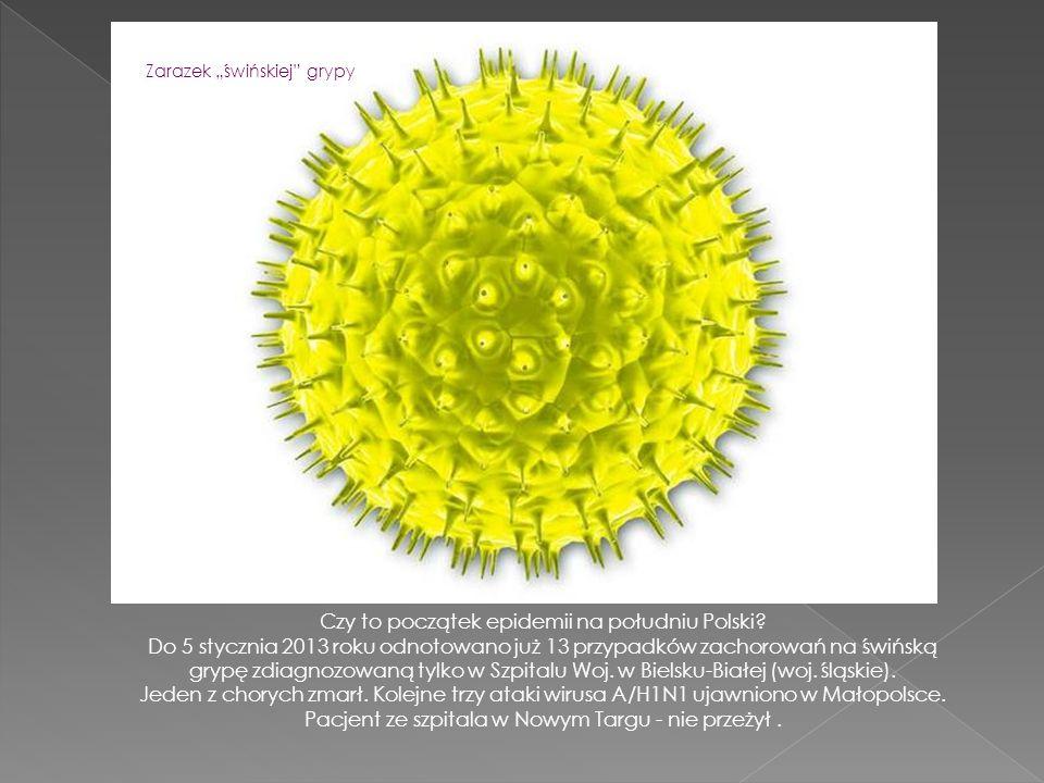 Zmienna aura jest jednym z czynników, sprzyjających zachorowaniem na grypę.