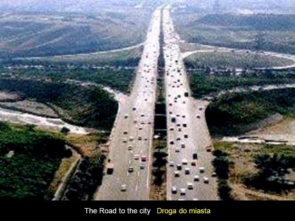 The Road to the city Droga do miasta
